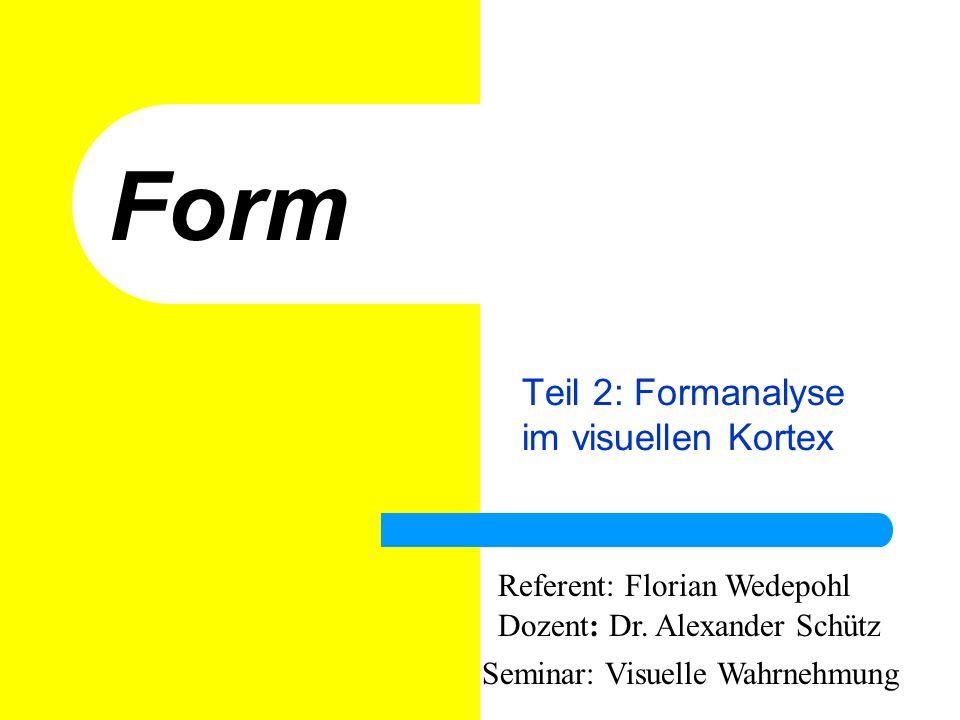 Form Teil 2: Formanalyse im visuellen Kortex Referent: Florian Wedepohl Dozent: Dr. Alexander Schütz Seminar: Visuelle Wahrnehmung