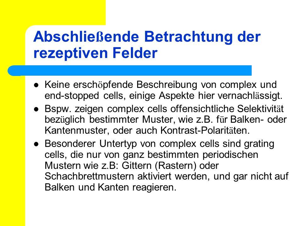 Abschlie ß ende Betrachtung der rezeptiven Felder Keine ersch ö pfende Beschreibung von complex und end-stopped cells, einige Aspekte hier vernachl ä