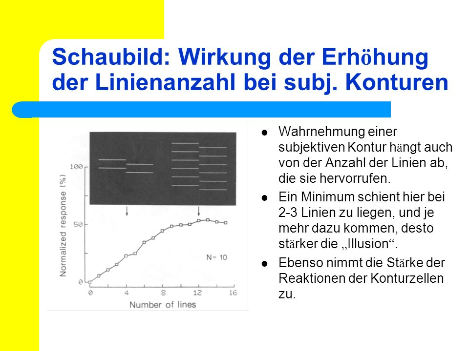 Schaubild: Wirkung der Erh ö hung der Linienanzahl bei subj. Konturen Wahrnehmung einer subjektiven Kontur h ä ngt auch von der Anzahl der Linien ab,