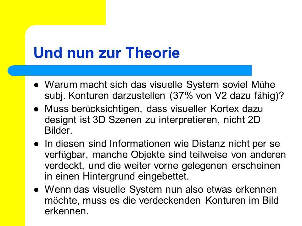 Und nun zur Theorie Warum macht sich das visuelle System soviel M ü he subj. Konturen darzustellen (37% von V2 dazu f ä hig)? Muss ber ü cksichtigen,