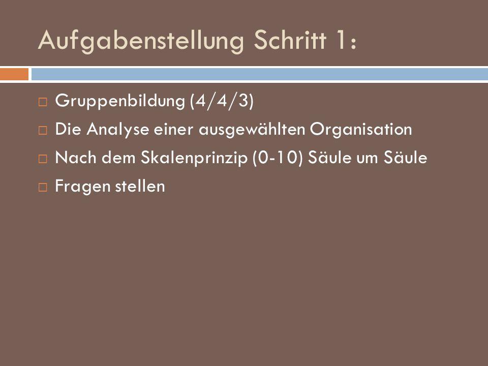 Aufgabenstellung Schritt 1: Gruppenbildung (4/4/3) Die Analyse einer ausgewählten Organisation Nach dem Skalenprinzip (0-10) Säule um Säule Fragen ste