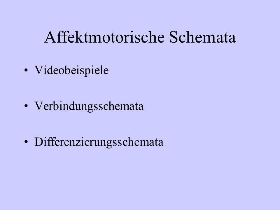 Affektmotorische Schemata Videobeispiele Verbindungsschemata Differenzierungsschemata