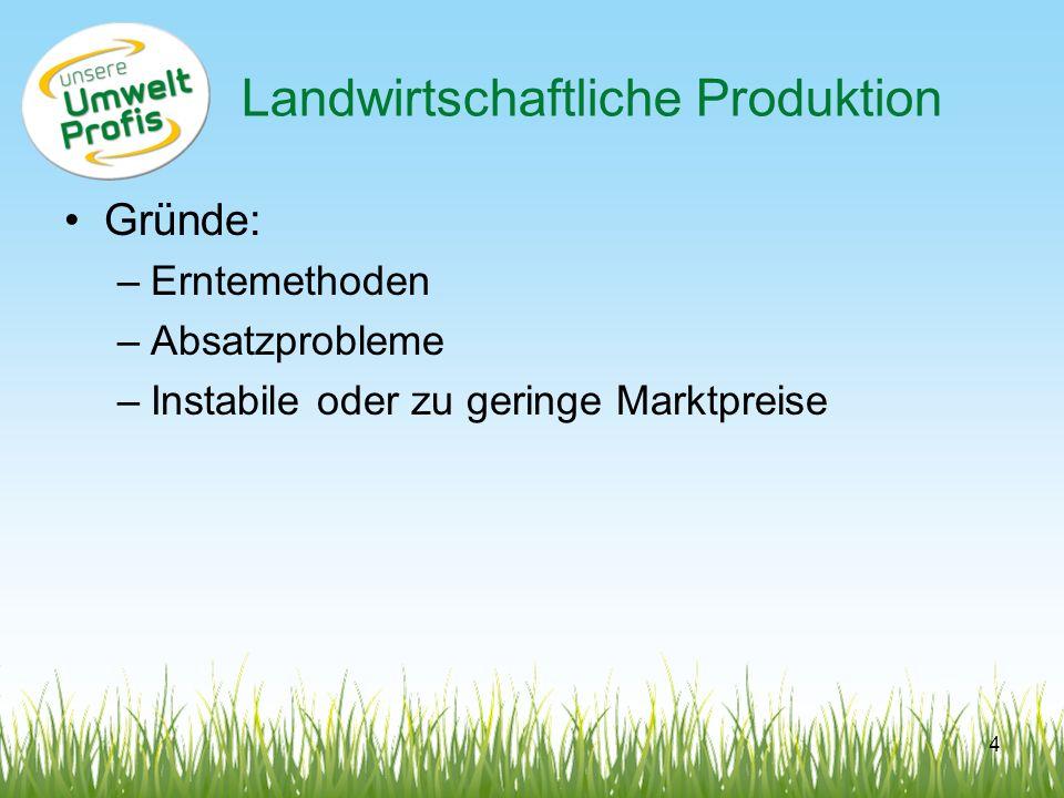 Landwirtschaftliche Produktion Gründe: –Erntemethoden –Absatzprobleme –Instabile oder zu geringe Marktpreise 4
