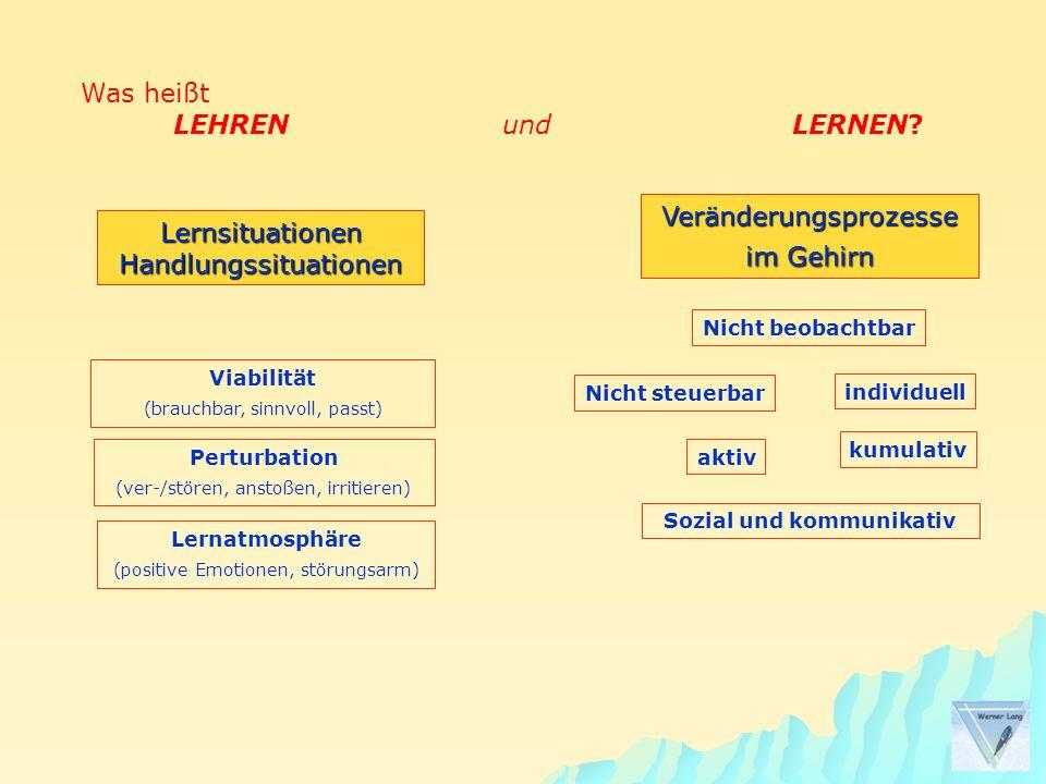Was heißt LEHREN und LERNEN? LernsituationenHandlungssituationen Perturbation (ver-/stören, anstoßen, irritieren) Viabilität (brauchbar, sinnvoll, pas