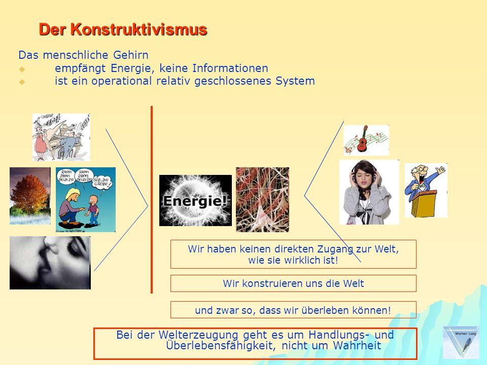 Das menschliche Gehirn empfängt Energie, keine Informationen ist ein operational relativ geschlossenes System Der Konstruktivismus Wir haben keinen di