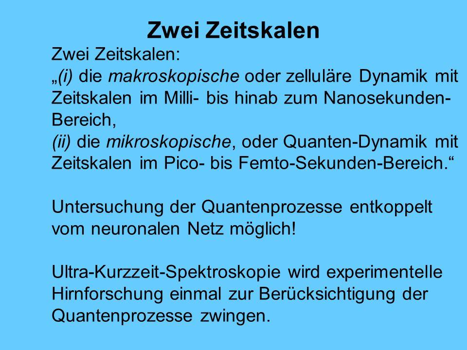 Zwei Zeitskalen Zwei Zeitskalen: (i) die makroskopische oder zelluläre Dynamik mit Zeitskalen im Milli- bis hinab zum Nanosekunden- Bereich, (ii) die mikroskopische, oder Quanten-Dynamik mit Zeitskalen im Pico- bis Femto-Sekunden-Bereich.