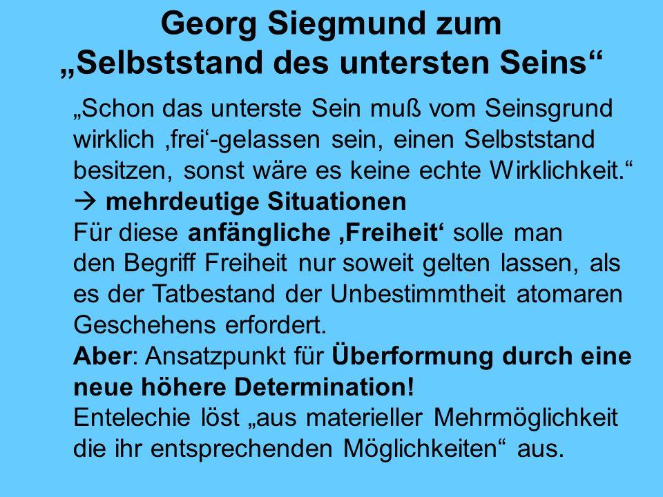 Georg Siegmund zum Selbststand des untersten Seins Schon das unterste Sein muß vom Seinsgrund wirklich frei-gelassen sein, einen Selbststand besitzen, sonst wäre es keine echte Wirklichkeit.