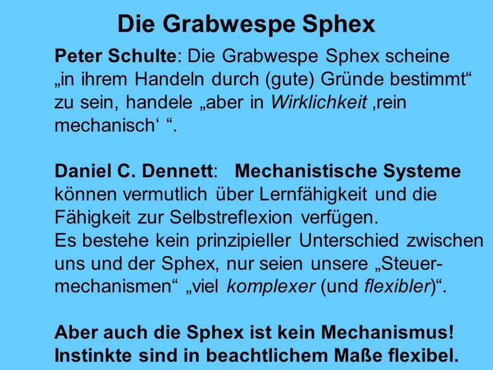 Die Grabwespe Sphex Peter Schulte: Die Grabwespe Sphex scheine in ihrem Handeln durch (gute) Gründe bestimmt zu sein, handele aber in Wirklichkeit rein mechanisch.