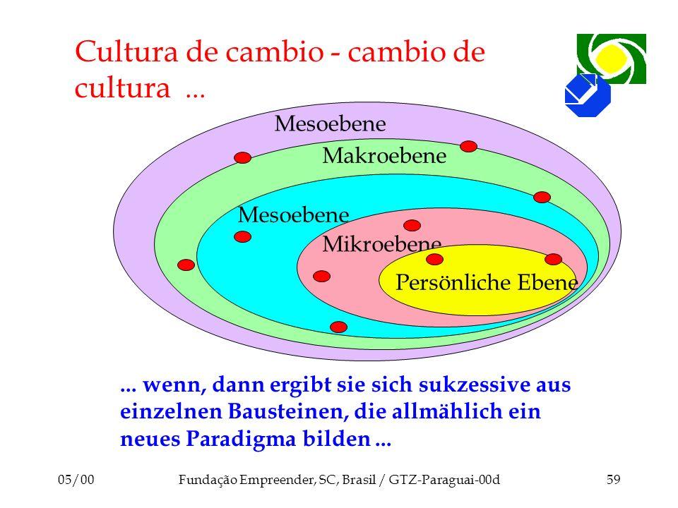 05/00Fundação Empreender, SC, Brasil / GTZ-Paraguai-00d59 Mesoebene Makroebene Cultura de cambio - cambio de cultura... Mesoebene Mikroebene Persönlic