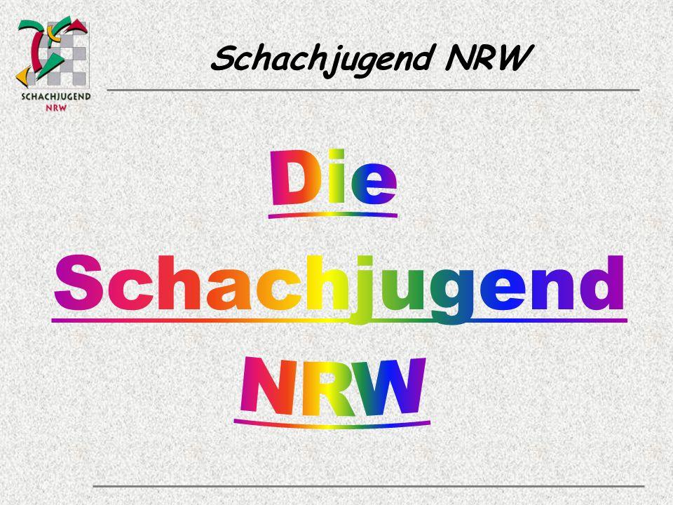 Schachjugend NRW Zielgruppen & Bezugsgruppen Als Hauptzielgruppe sind die Kinder und Jugendlichen unmittelbar und mittelbar im Fokus der Schachjugend