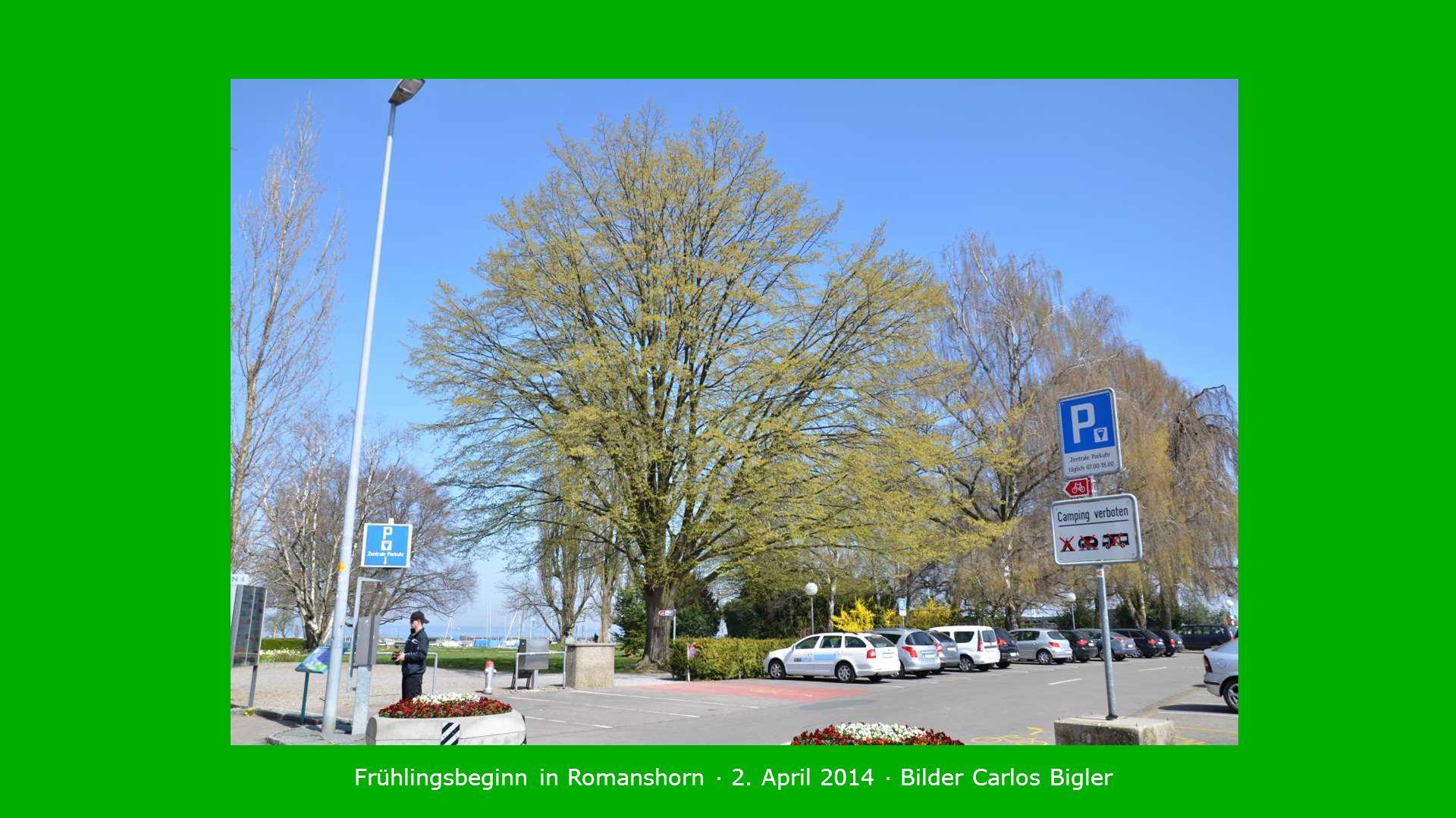 Frühlingsbeginn in Romanshorn · 2. April 2014 · Bilder Carlos Bigler