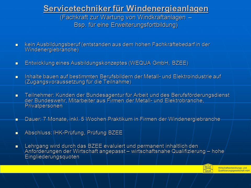 Servicetechniker für Windenergieanlagen (Fachkraft zur Wartung von Windkraftanlagen – Bsp.