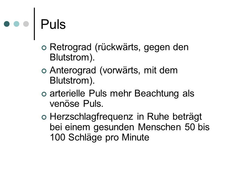 Puls Retrograd (rückwärts, gegen den Blutstrom). Anterograd (vorwärts, mit dem Blutstrom). arterielle Puls mehr Beachtung als venöse Puls. Herzschlagf