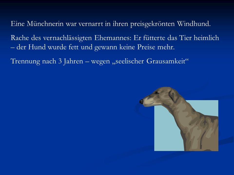Eine Münchnerin war vernarrt in ihren preisgekrönten Windhund. Rache des vernachlässigten Ehemannes: Er fütterte das Tier heimlich – der Hund wurde fe