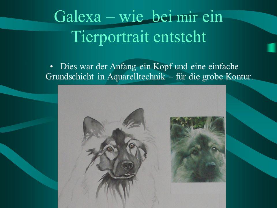 Galexa – wie bei mir ein Tierportrait entsteht Dies war der Anfang ein Kopf und eine einfache Grundschicht in Aquarelltechnik – für die grobe Kontur.