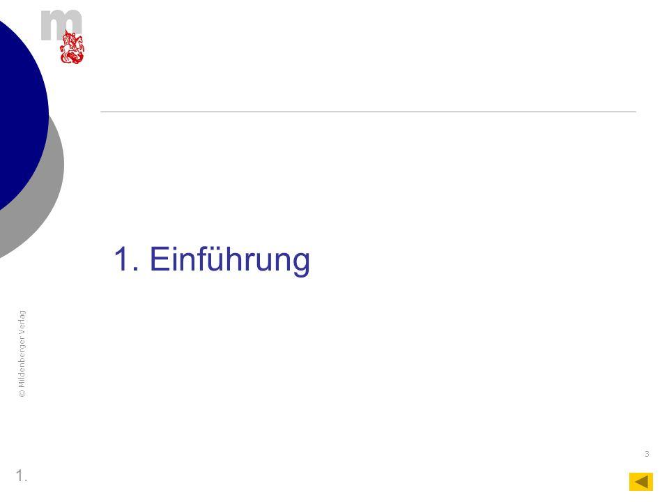© Mildenberger Verlag 24 Bedienungsanleitung Das Tabellenblatt MLP 1 3.