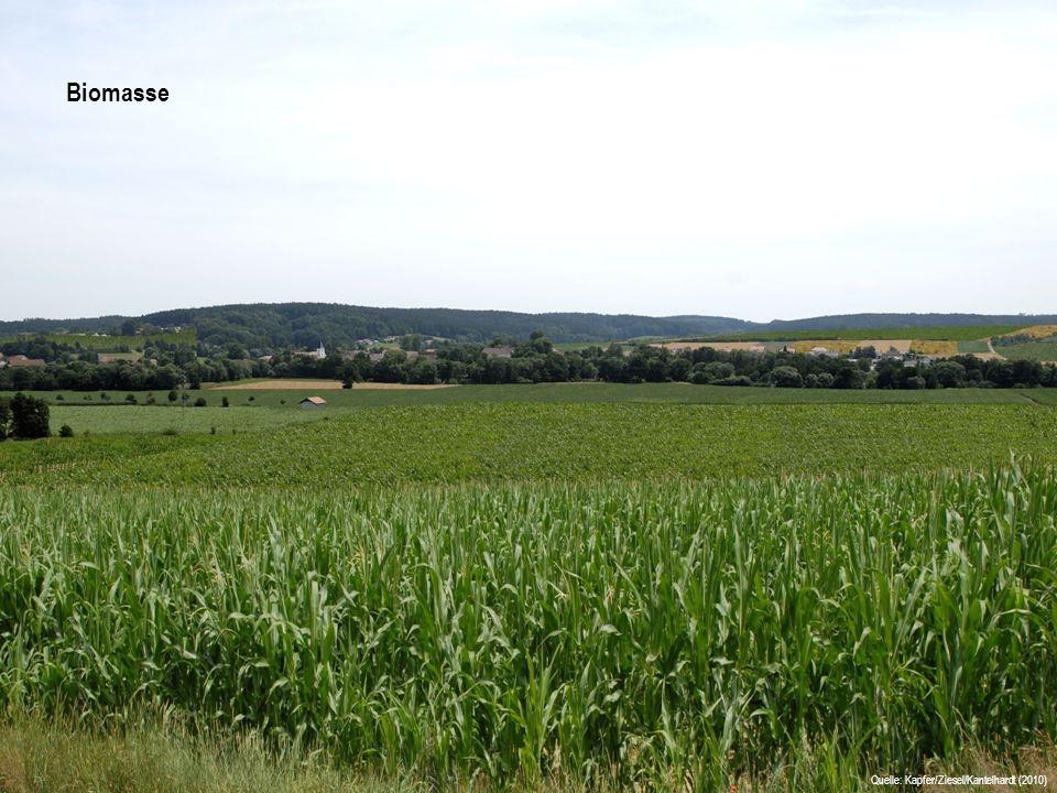 AusgangssituationBiomasse Quelle: Kapfer/Ziesel/Kantelhardt (2010)