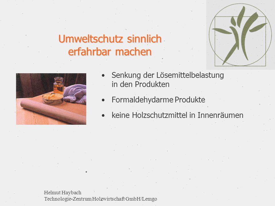 Helmut Haybach Technologie-Zentrum Holzwirtschaft GmbH/Lemgo Umweltschutz sinnlich erfahrbar machen Senkung der Lösemittelbelastung in den Produkten F