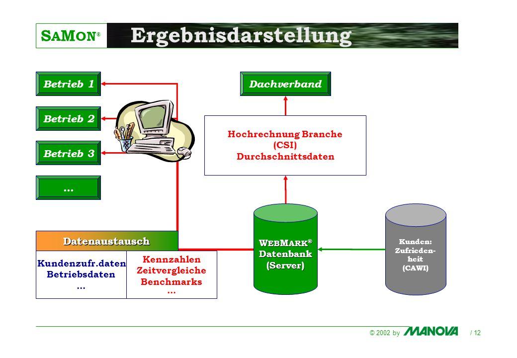 S A M ON ® © 2002 by / 12 Hochrechnung Branche (CSI) Durchschnittsdaten Kennzahlen Zeitvergleiche Benchmarks... W EB M ARK ® Datenbank(Server) Betrieb