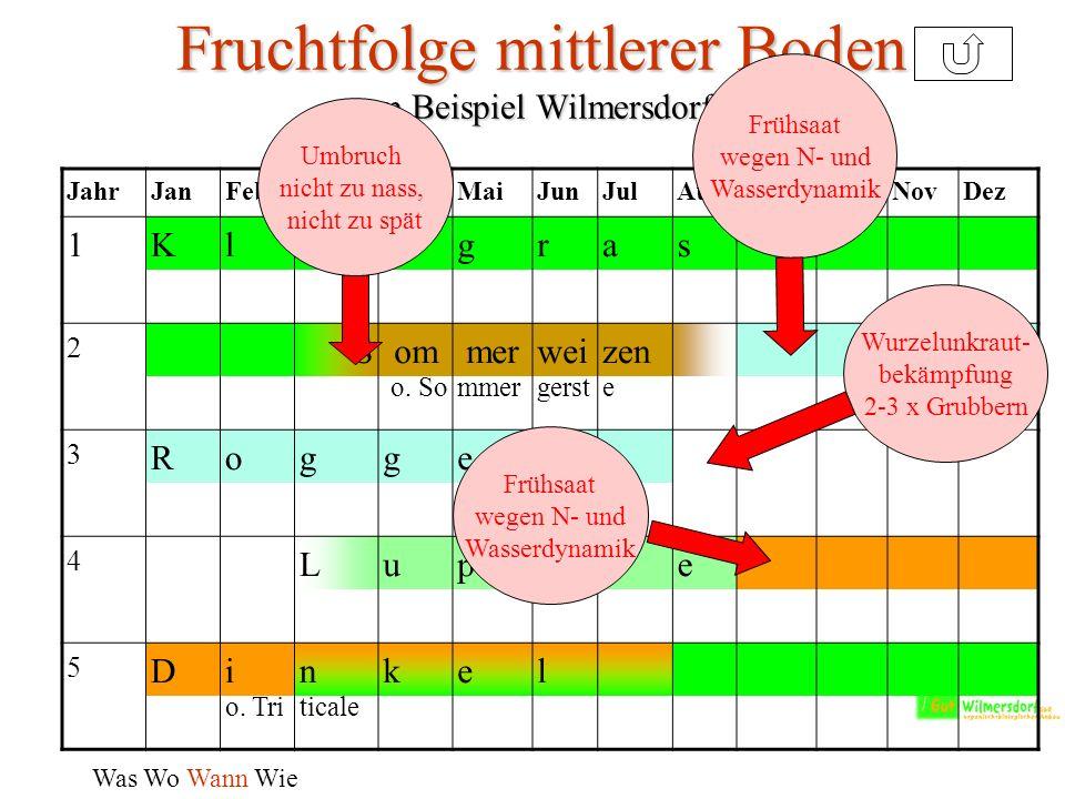 Fruchtfolge mittlerer Boden - am Beispiel Wilmersdorf – Was Wo Wann Wie JahrJanFebMärAprMaiJunJulAugSepOktNovDez 1Kleegras 2 SommerweizenW- o.