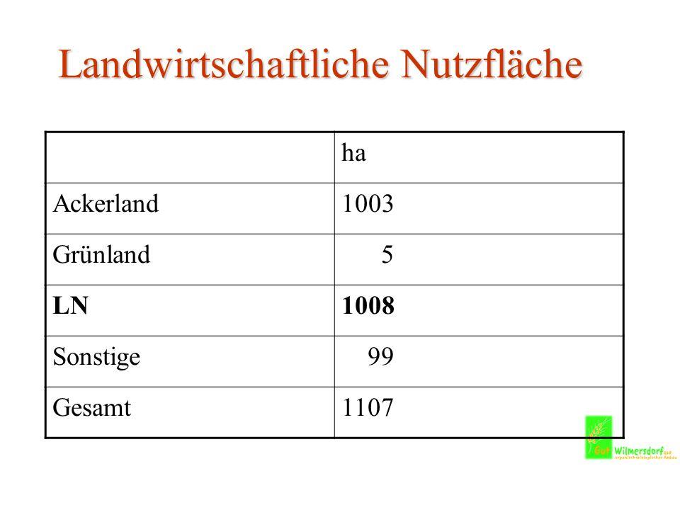 Landwirtschaftliche Nutzfläche ha Ackerland1003 Grünland 5 LN1008 Sonstige 99 Gesamt1107