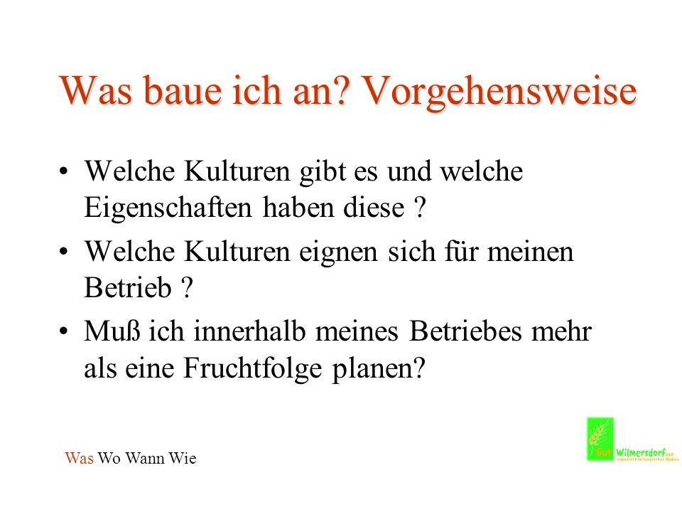 Fruchtfolge schwerer Boden - am Beispiel Wilmersdorf – Was Wo Wann Wie JahrJanFebMärAprMaiJunJulAugSepOktNovDez 1Kleegra sW- 2 RapsW- 3 Weizen Wurzelunkraut- bekämpfung 2-3 x Grubbern Evtl.