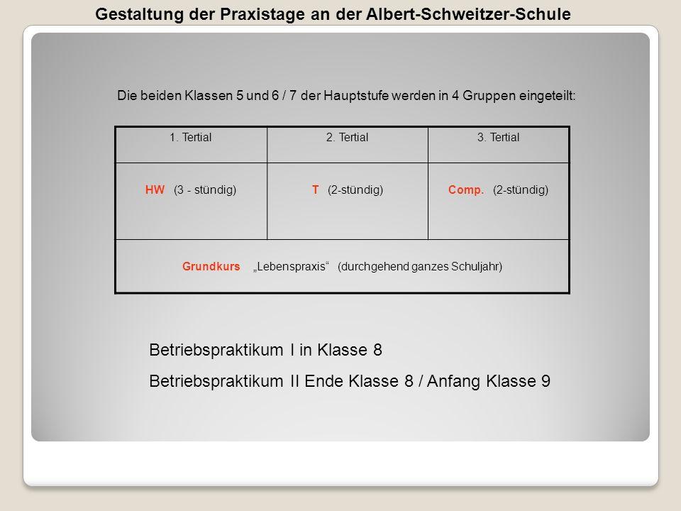 Gestaltung der Praxistage an der Albert-Schweitzer-Schule Die beiden Klassen 5 und 6 / 7 der Hauptstufe werden in 4 Gruppen eingeteilt: 1. Tertial2. T
