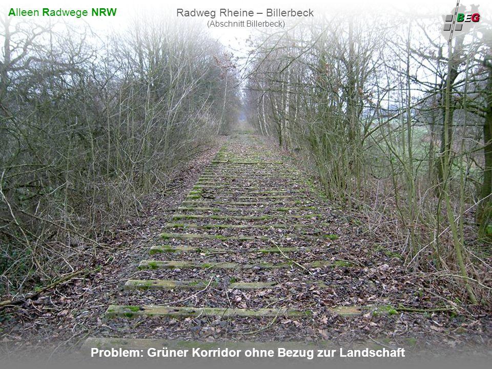 Pro Bahn Februar 2008 B AHNFLÄCHEN E NTWICKLUNGS G ESELLSCHAFT NRW mbH Problem: Grüner Korridor ohne Bezug zur Landschaft Radweg Rheine – Billerbeck (Abschnitt Billerbeck) Alleen Radwege NRW