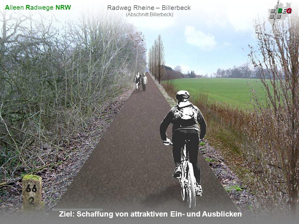 Pro Bahn Februar 2008 B AHNFLÄCHEN E NTWICKLUNGS G ESELLSCHAFT NRW mbH Ziel: Schaffung von attraktiven Ein- und Ausblicken Radweg Rheine – Billerbeck (Abschnitt Billerbeck) Alleen Radwege NRW