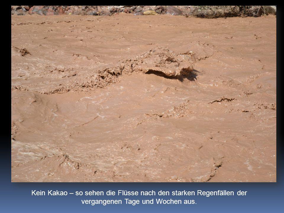 Kein Kakao – so sehen die Flüsse nach den starken Regenfällen der vergangenen Tage und Wochen aus.
