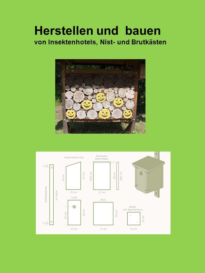 Herstellen und bauen von Insektenhotels, Nist- und Brutkästen