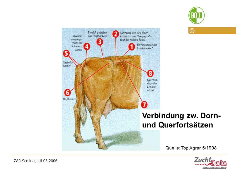 ZAR-Seminar, 16.03.2006 Verbindung zw. Dorn- und Querfortsätzen Quelle: Top Agrar, 6/1998