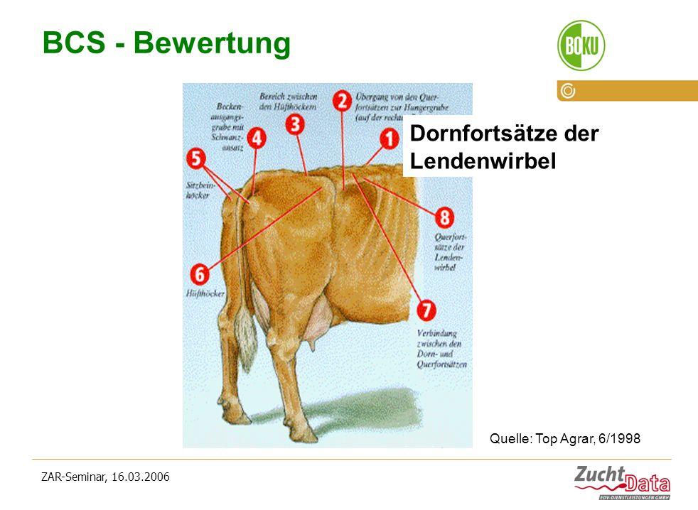 ZAR-Seminar, 16.03.2006 BCS - Bewertung Dornfortsätze der Lendenwirbel Quelle: Top Agrar, 6/1998