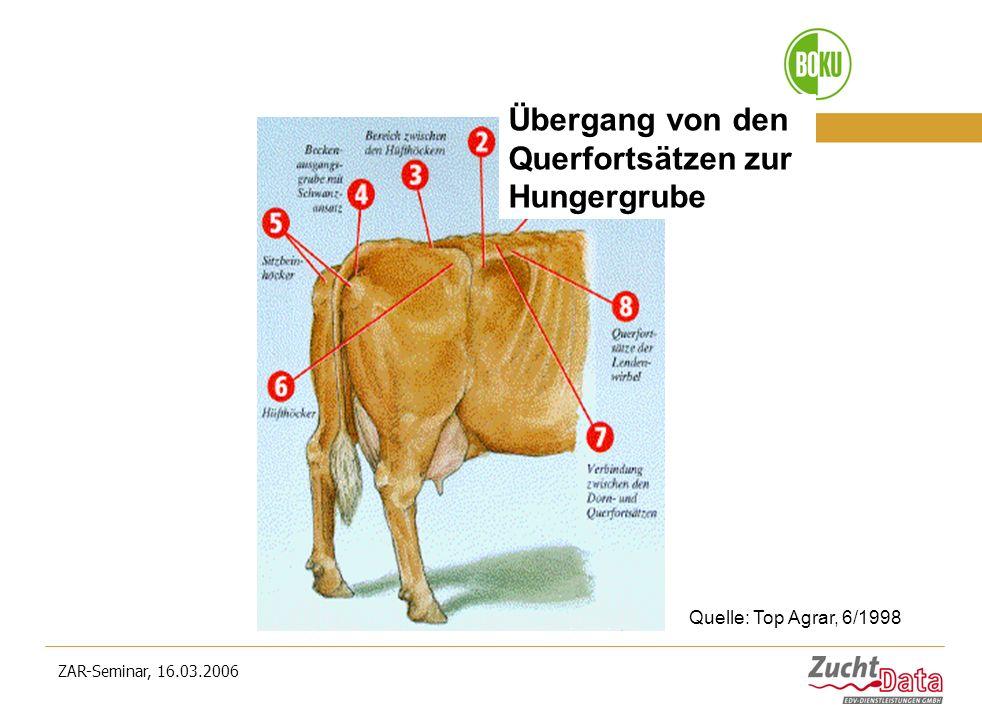 ZAR-Seminar, 16.03.2006 Übergang von den Querfortsätzen zur Hungergrube Quelle: Top Agrar, 6/1998