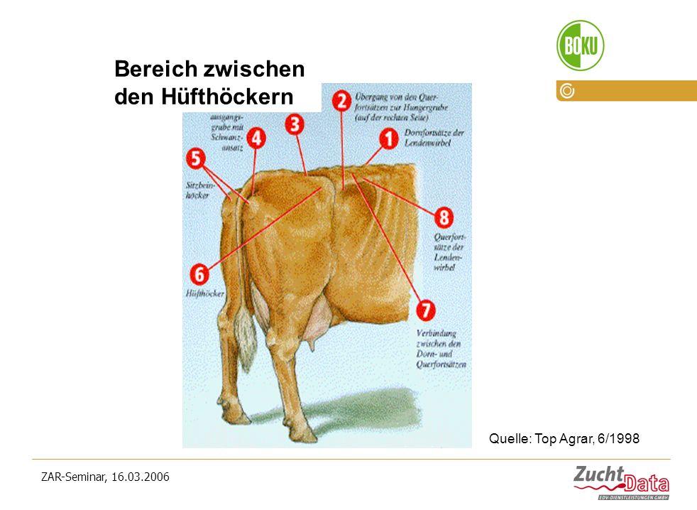 ZAR-Seminar, 16.03.2006 Bereich zwischen den Hüfthöckern Quelle: Top Agrar, 6/1998