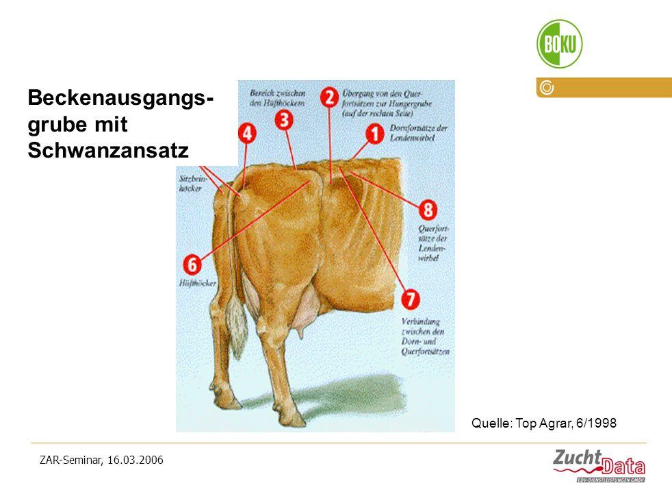 ZAR-Seminar, 16.03.2006 Optimale Körperkondition beim Fleckvieh im Laktationsverlauf Quelle: Top Agrar