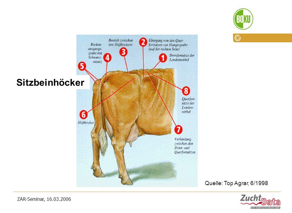 ZAR-Seminar, 16.03.2006 Sitzbeinhöcker Quelle: Top Agrar, 6/1998