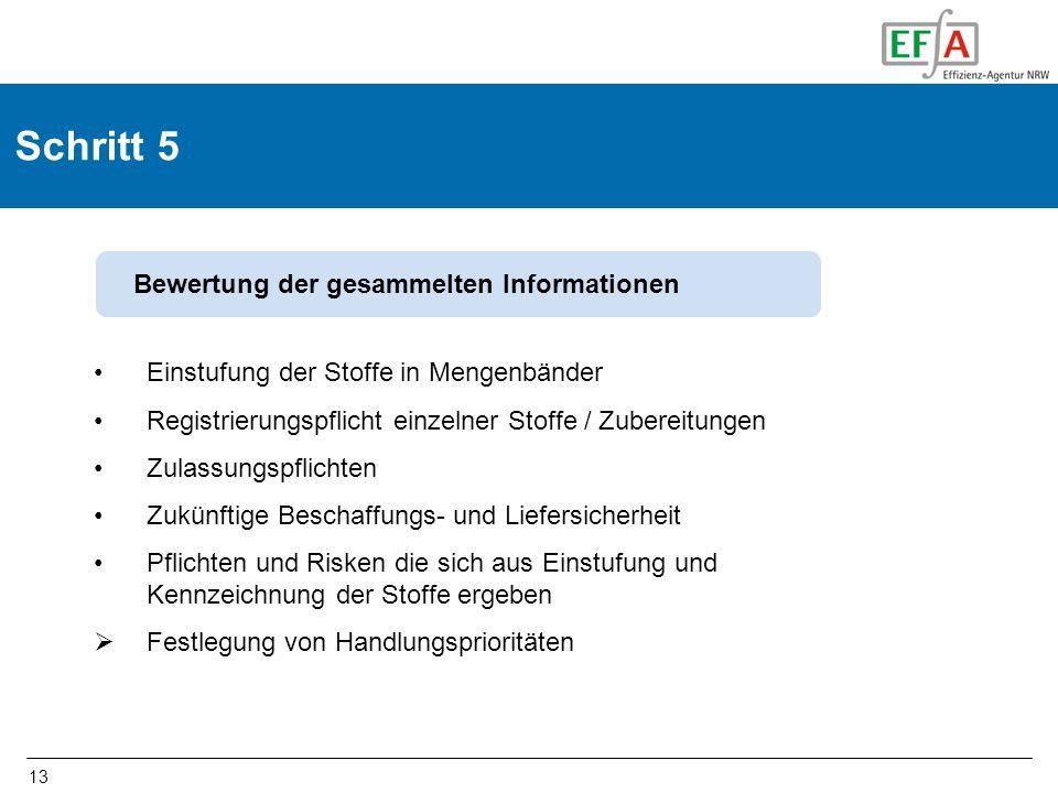 13 Schritt 5 Einstufung der Stoffe in Mengenbänder Registrierungspflicht einzelner Stoffe / Zubereitungen Zulassungspflichten Zukünftige Beschaffungs-