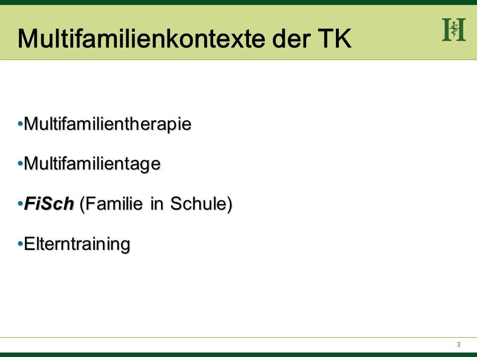 3 Multifamilienkontexte der TK MultifamilientherapieMultifamilientherapie MultifamilientageMultifamilientage FiSch (Familie in Schule)FiSch (Familie i