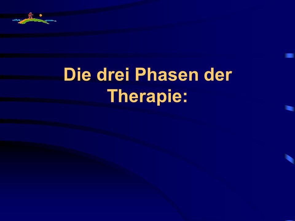Die drei Phasen der Therapie: