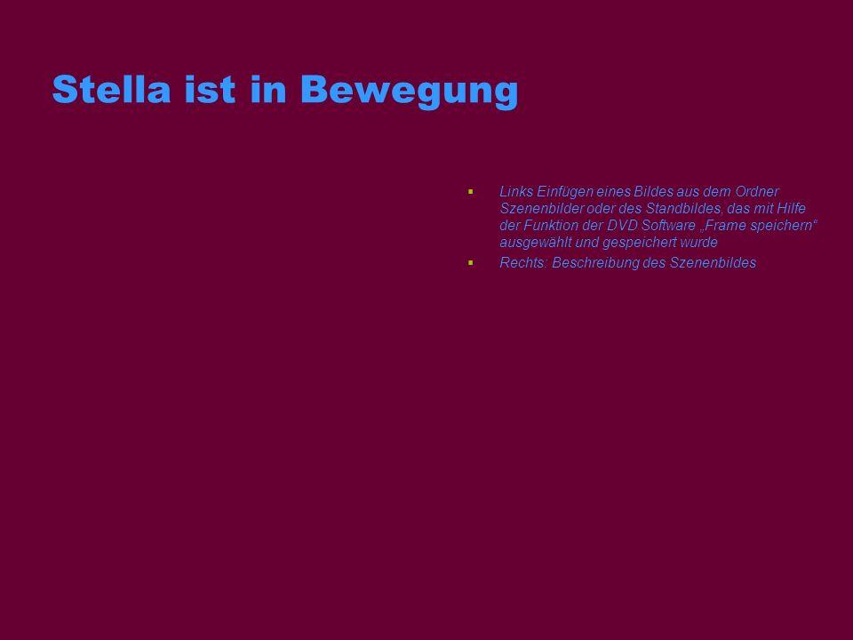 Stella ist in Bewegung Links Einfügen eines Bildes aus dem Ordner Szenenbilder oder des Standbildes, das mit Hilfe der Funktion der DVD Software Frame