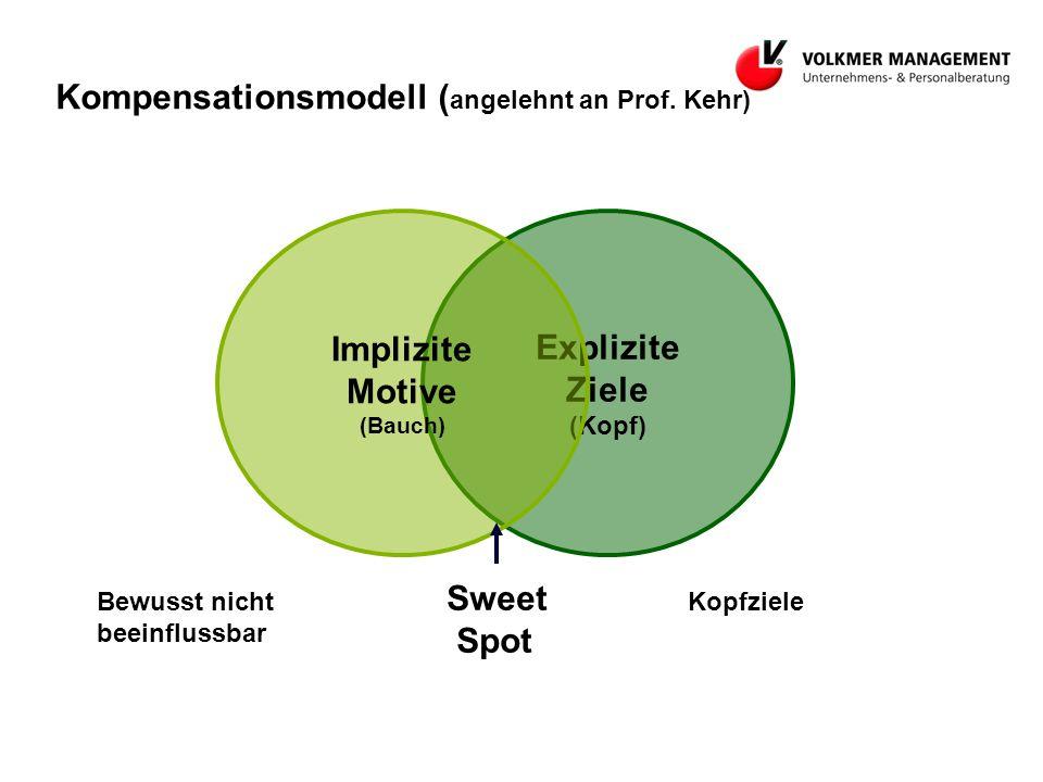 Explizite Ziele (Kopf) Kompensationsmodell ( angelehnt an Prof.