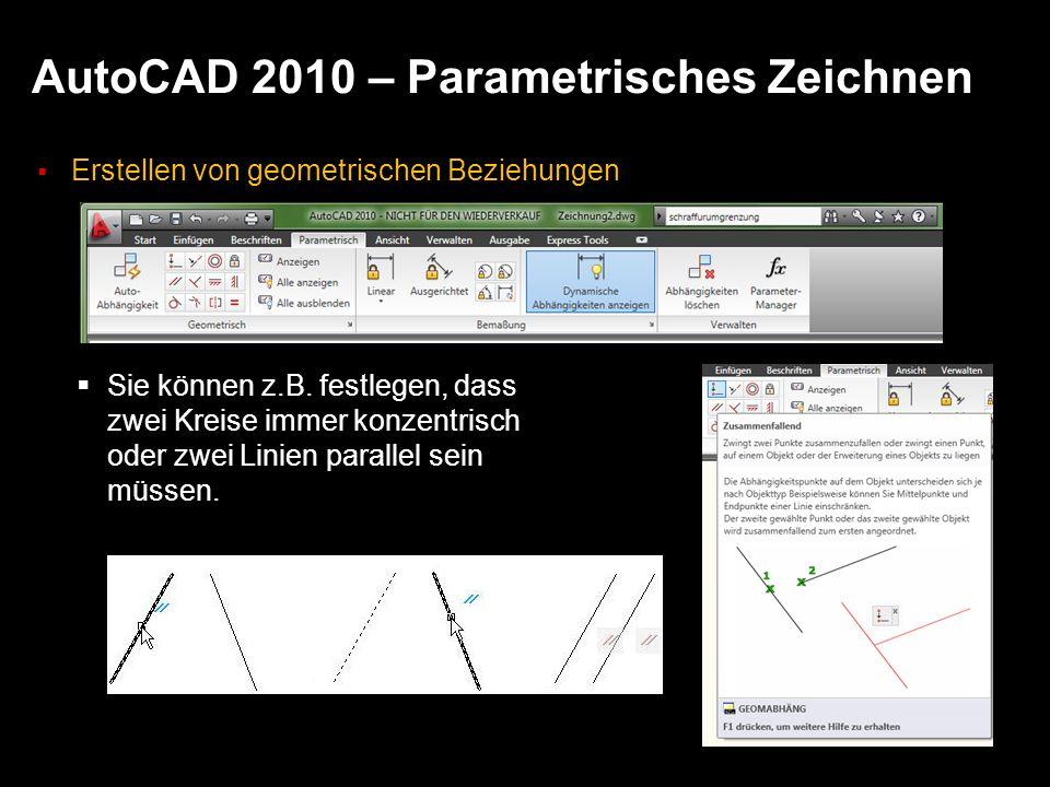 AutoCAD 2010 – Parametrisches Zeichnen Erstellen von geometrischen Beziehungen Sie können z.B. festlegen, dass zwei Kreise immer konzentrisch oder zwe