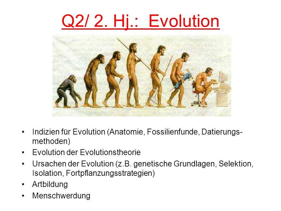 Q2/ 2. Hj.: Evolution Indizien für Evolution (Anatomie, Fossilienfunde, Datierungs- methoden) Evolution der Evolutionstheorie Ursachen der Evolution (