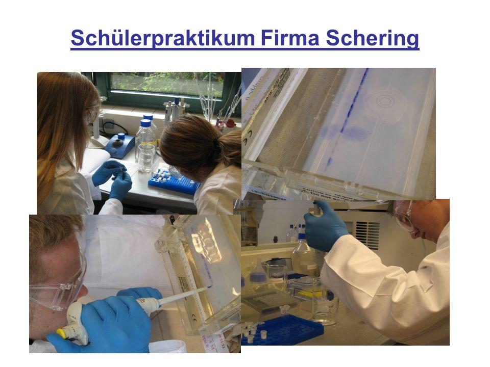 Schülerpraktikum Firma Schering