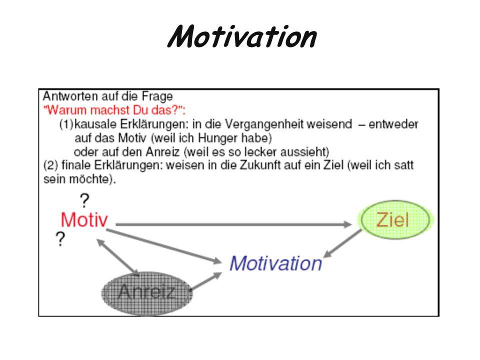 Kennzeichen motivierten Handelns