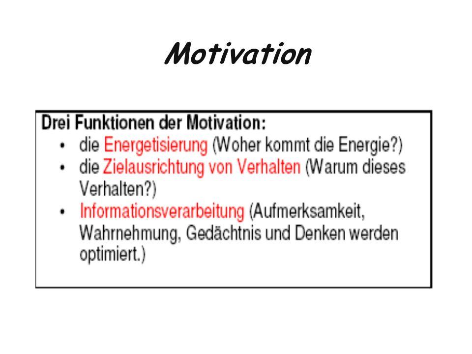 Motivation- Quellen Alles was wir tun, wird durch die Antriebskraft von Bedürfnissen geleitet.