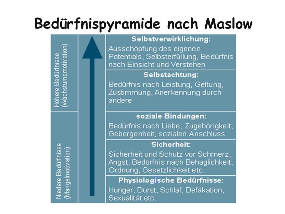 Motivationsmodell nach Bauer Gefühl einer grundlegenden Sicherheit (Abwesenheit von existentieller Bedrohung) und sicherung der körperlichen Grundbedürfnisse (Hunger, Durst, Wärme, Schlaf etc.).