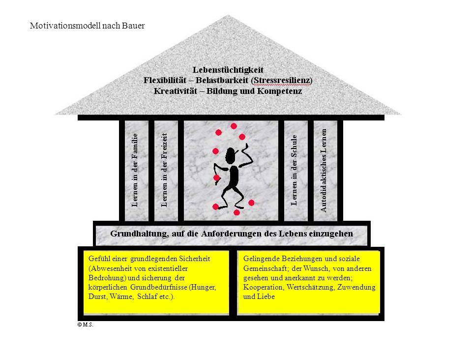 Motivationsmodell nach Bauer Gefühl einer grundlegenden Sicherheit (Abwesenheit von existentieller Bedrohung) und sicherung der körperlichen Grundbedü