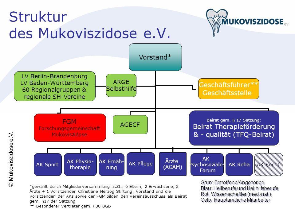 Struktur des Mukoviszidose e.V.